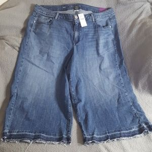 LANE BRYANT CROP DISTRESSED JEANS ~ NEW PLUS 20